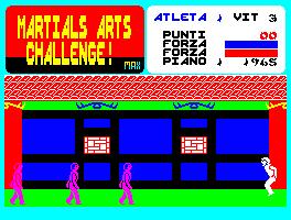 Martial Arts Challenge